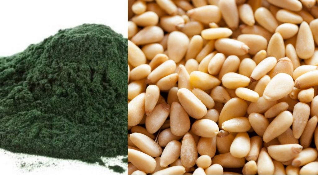 Complete Vegan Protein: spirulina and pine nuts
