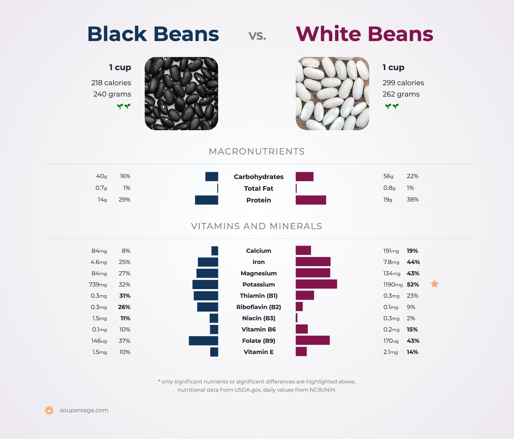 nutrition comparison of black beans vs. white beans