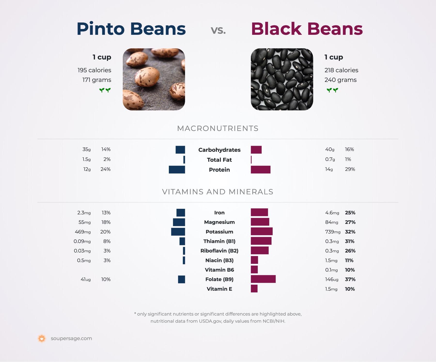 nutrition comparison of black beans vs. pinto beans